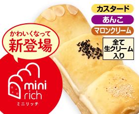 ミニリッチ 3味